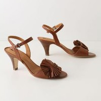Oscillate Heels - Anthropologie.com