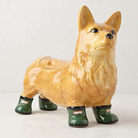 Pedigreed Cookie Jar, Corgi by Anthropologie Taupe One Size Kitchen