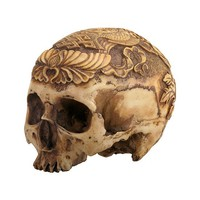 Human Head Skull by Summit Collection