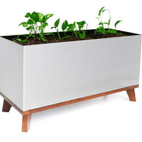 Madiera Rectangle Planter