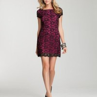 bebe Color Lace Dress