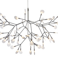 heracleum suspension light