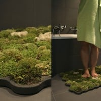 La Chanh Nguyen - Yverdon, Switzerland - 'Moss carpet' ($100-200)