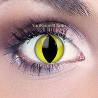 Funky Eyes Yellow Cat Eye Contact Lenses   Coloured Contact Lenses