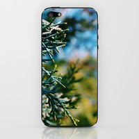 Tree Bokeh iPhone & iPod Skin by Kelly Sweet