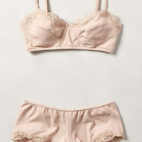 Phlox Boyshorts by Anthropologie