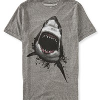 Shark Graphic T