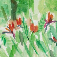 Bird of Paradise in Bloom, original water color painting, landscape, garden, fresh green, tangerine