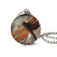 Vintage Ephemera Art Brown Wings Dragonfly Glass Necklace Insect | LittleApples - Jewelry on ArtFire