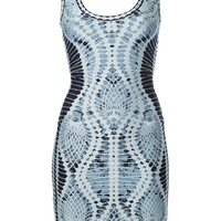 Hervé Léger Printed Fitted Bodycon Dress