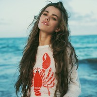 Lobster Destroyed Sweater by Wildfox - $250