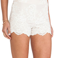 Alice + Olivia High Waisted Lace Short in Nude