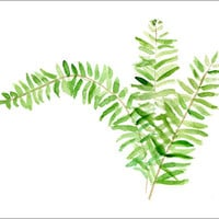 Fern art print of original watercolor painting, minimalist , botanical, plants print, green, zen
