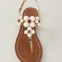 TORY BURCH jewel embellished sandal
