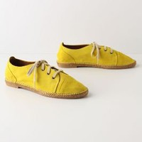 Cross-Continent Sneakers - Anthropologie.com