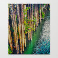 River Front Stretched Canvas by DuckyB (Brandi)
