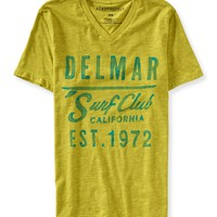 Delmar V-Neck Graphic T