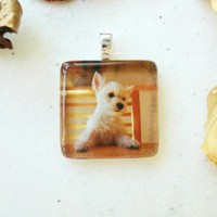 Puppy Jewelry West Highland White Terrier Glass Tile 7/8 Inch Square | LittleApples - Jewelry on ArtFire