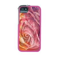 Pretty Colorful Painted Rose iPhone 5/5S Case