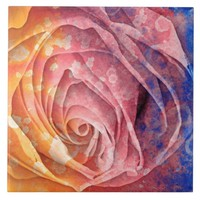Pretty Colorful Painted Rose Ceramic Tile