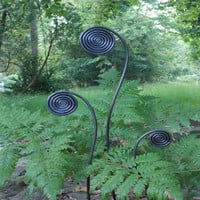 Fiddlehead Fern Stakes - FIDDLEHEAD FERN STAKES (SET OF 3)