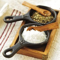 Cast-Iron Skillet Salt & Pepper Cellar | Pottery Barn