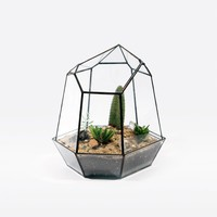 The Future Perfect - Quartz Terrarium - Objects
