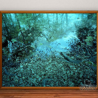 Pond Leaves Photography, ground photo print, fine art, leaf wall art, lake wall decor, river home decor, reflections, 8x10, 12x15, 16x20