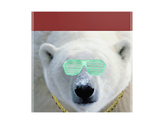 Swag Polar Bear