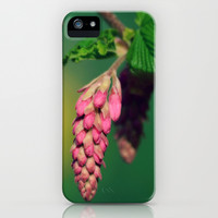 Blooms iPhone & iPod Case by RDelean