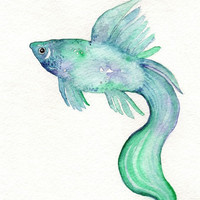 Beta Fish/Teal Blue Purple/ Watercolor Print by kellybermudez