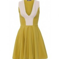 Lime & White Plunge Front Skater Dress
