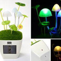 Japan Trend Shop | Kinoko Mushroom USB Lamp