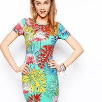 ASOS Bodycon Dress in Flamingo Print