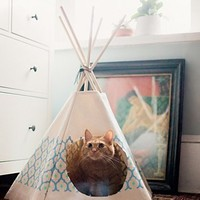 Free People Royal Printed Cat Tipi