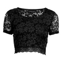 Petite Short Sleeve Lace Crop