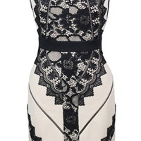 Tetris Lace Dress | Embroidered Sleeveless Lace Bodycon Dresses | Rickety Rack