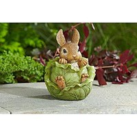Decorative Bunny In Cabbage
