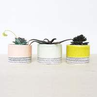 Herringbone Stripe Planter Cup