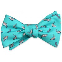 Shark Week Bow Tie in Turquoise by Bird Dog Bay