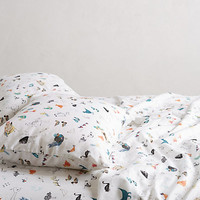 Paths Of Flight Sheet Set