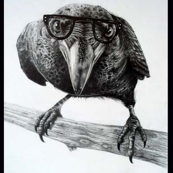 Fine Art Print of Crow in Specs by Elizabeth Naji