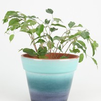 Magical Thinking Horizons Planter - Urban Outfitters