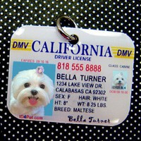 California Driver License Pet Photo ID Tag by id4pet on Etsy