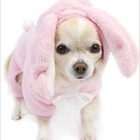 Bunny Jumper Dog Pajamas