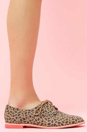Mini Oxford - Leopard in  Shoes at Nasty Gal