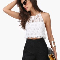 Beware Lace Crop Top