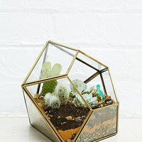 Urban Grow Diamond Terrarium Planter in Gold - Urban Outfitters