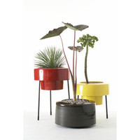 Pod Planter - Products - Dwell