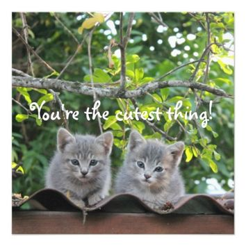 Two Grey Kittens - Greeting Card / Invitation
